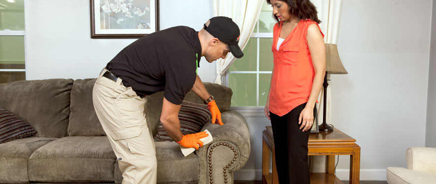 Henderson, NC carpet upholstery cleaning
